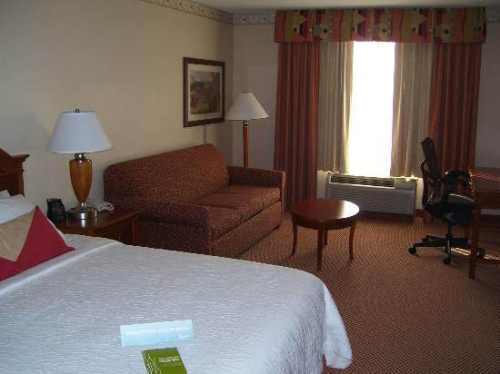 Hilton Garden Inn Gettysburg: Typical Room