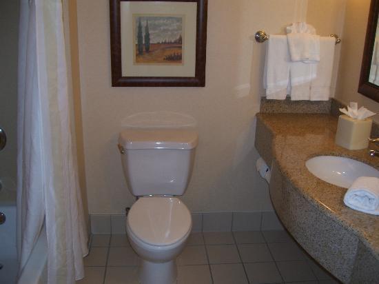 Hilton Garden Inn Gettysburg : Bathroom
