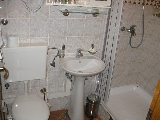 Vila Panonija: Baño