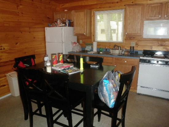 Twin Birches: kitchen in our cabin