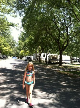 Sandusky KOA campground: our lane @ campground, lots of trees