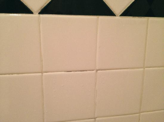 Econo Lodge Inn & Suites: Mildewy grout in the shower tiles