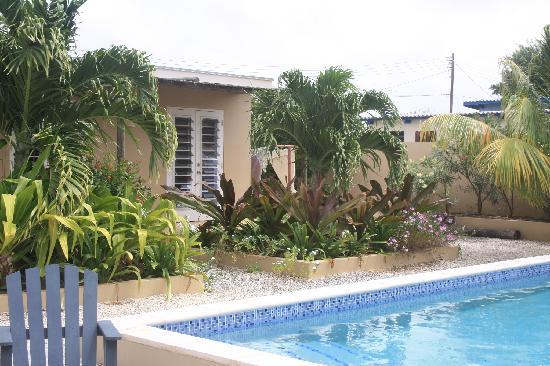 Villa Eco Bonaire: getlstd_property_photo
