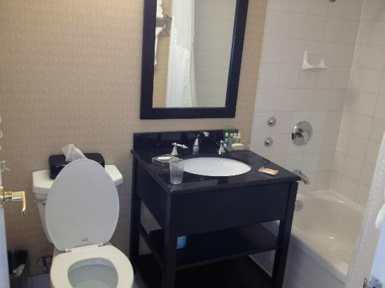 Sunbridge Hotel & Conference Centre Downtown Windsor: bathroom