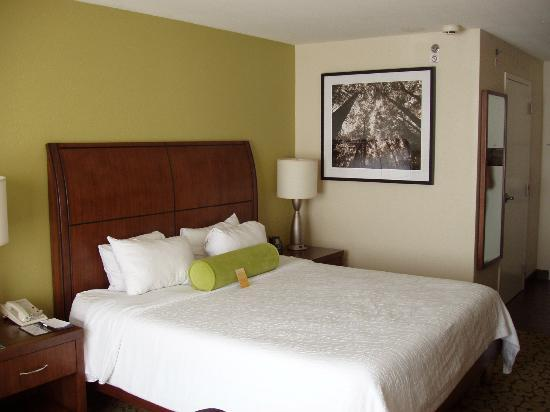 Hilton Garden Inn New Orleans Convention Center: Queen bed