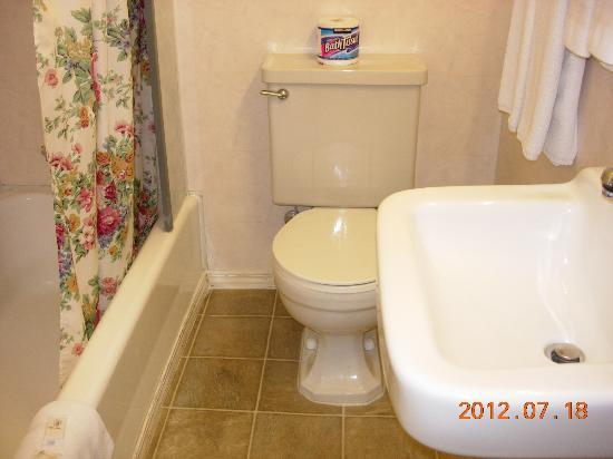 Century II Motel: bathroom