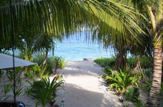 Wakatobi Dive Resort : View from our bungalow