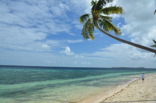 วากาโทบิ ไดฟ์ รีสอร์ท: Nice beach