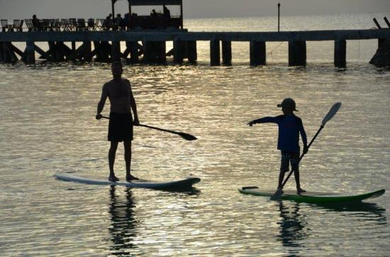 Wakatobi Dive Resort: Sunset paddle board