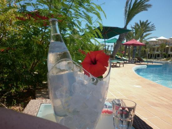 Hasdrubal Prestige Thalassa & Spa: Hisbiscus