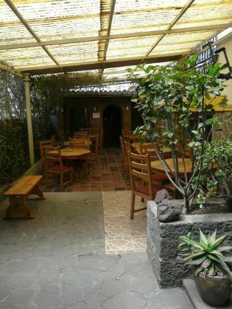 Hostal Zentrum: the garden