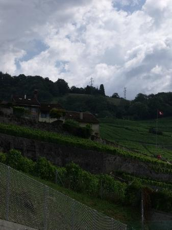 Clarion Collection Hotel Lavaux: View from room leaning out of window!