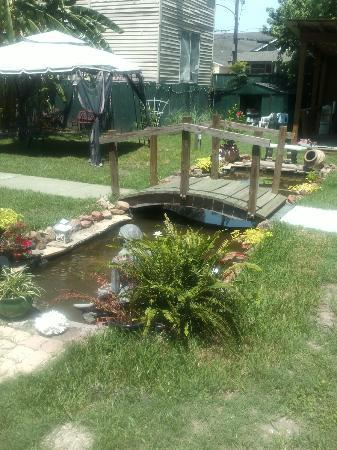 Hotel Storyville : Back Yard Pond