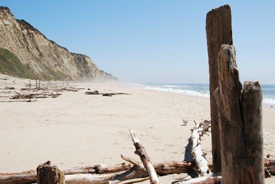 San Gregorio State Beach: San Gregorio Beach looking south