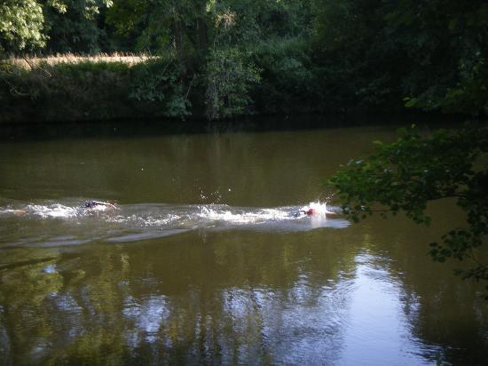 Tri-topia: Local river swim