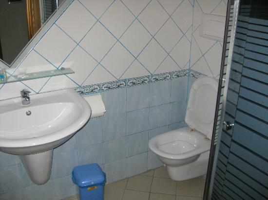 Hotel Alpin: Baño