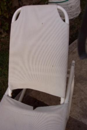Marina Del Rey Beach Club: Torn Lounge Chair