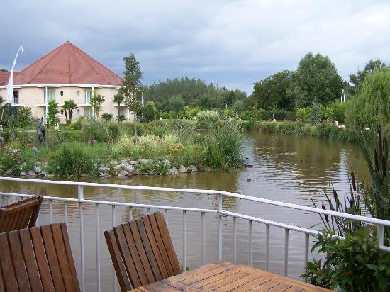 Les Jardins de Beauval: Etang