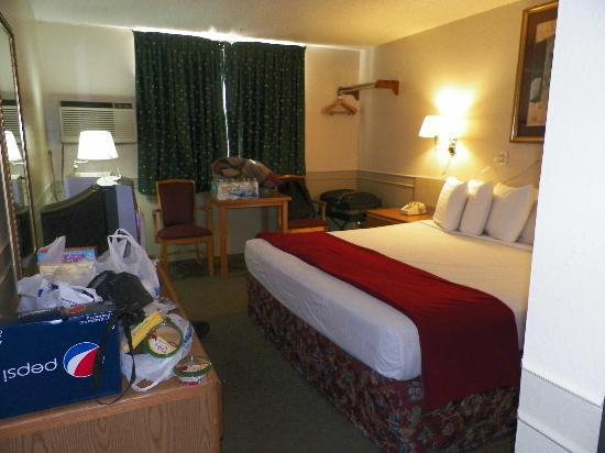 Affordable Inns : Room 117 king bed