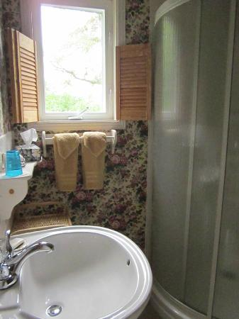 Harwood House Bed & Breakfast: washroom