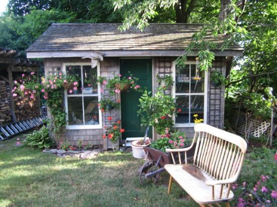 Harwood House Bed & Breakfast: out back