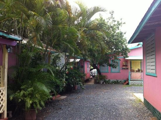 Naniqui Guest House & Rentals:                   room 2 is on the left, the little one on the left in the back, the big room to