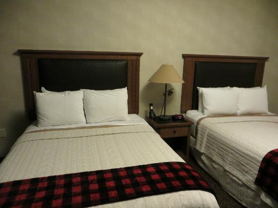 Stoney Creek Hotel & Conference Center - Sioux City: Bed