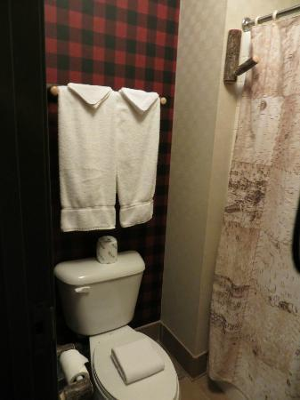 Stoney Creek Hotel & Conference Center - Sioux City: Bathroom