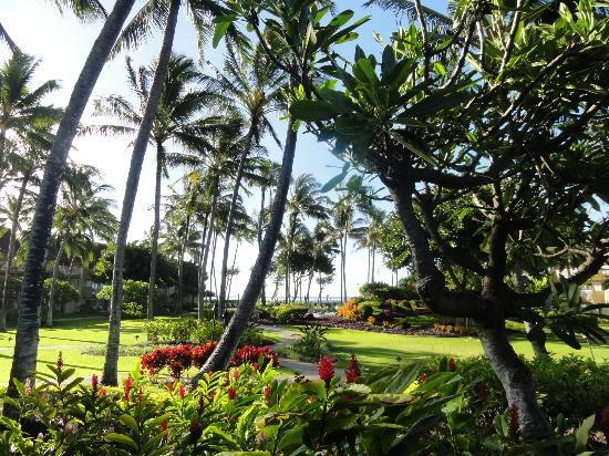 Kauai Coast Resort at the Beachboy: Beautiful Grounds