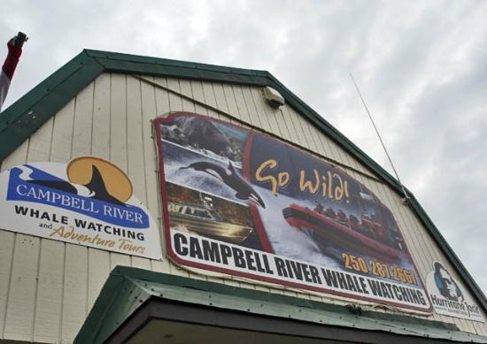 Campbell River Whale Watching and Adventure Tours: Home at Campbell River
