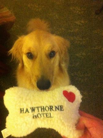 """Hawthorne Hotel : Sailor Rose with her """"woobie"""""""
