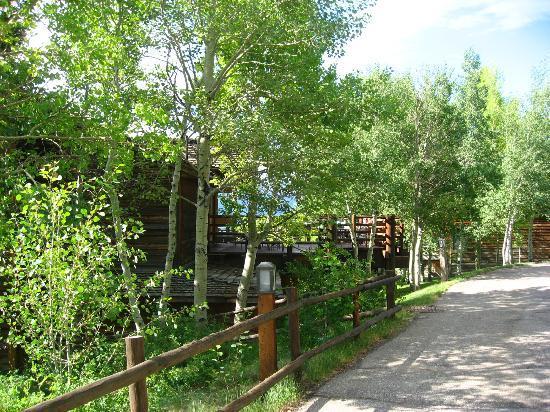 Spring Creek Ranch: Walkways