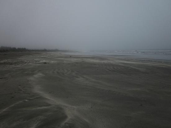 Crescent Beach Motel: Wonderful jogging beach at low tide
