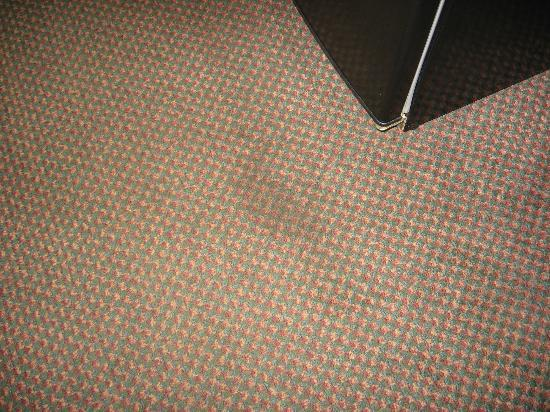 Ramada Asheville / Biltmore West: Stained carpet in front of refrigerator
