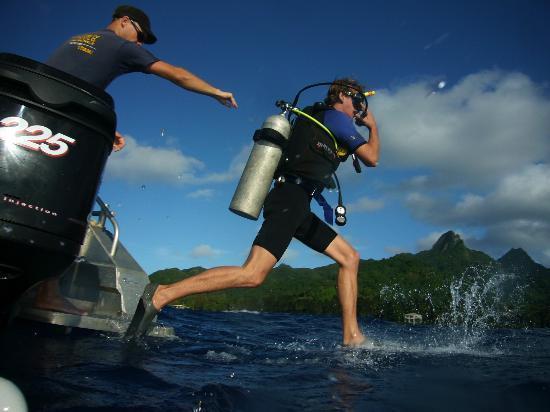 Dive Rarotonga: 6