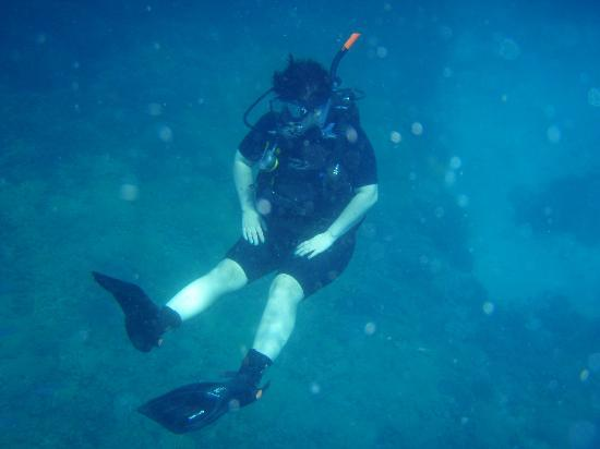 Blue Season Bali at The Menjangan: Doing the qualifying dives at Menjangan