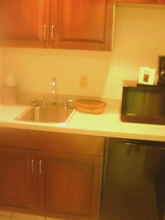 Hampton Inn Martinsville: Kitchenette