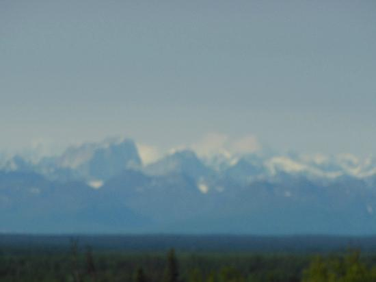 Talkeetna Alaskan Lodge: View from rear deck of main lodge