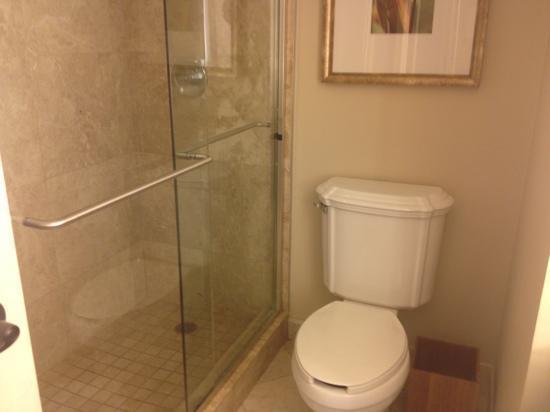 Delray Beach Marriott: great glass shower, wish the water pressure was better