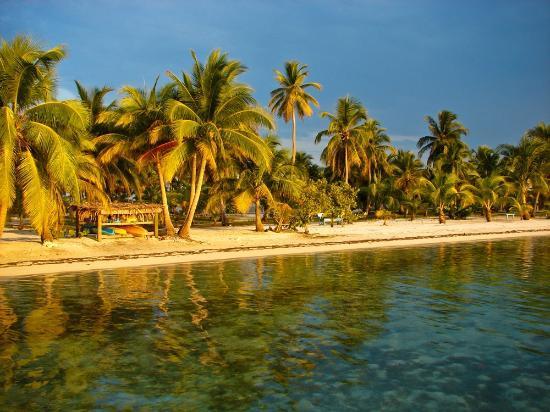 Pelican Beach - South Water Caye照片