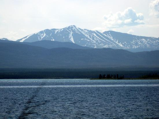 Yukon River - Marsh Lake, the headwaters of the river