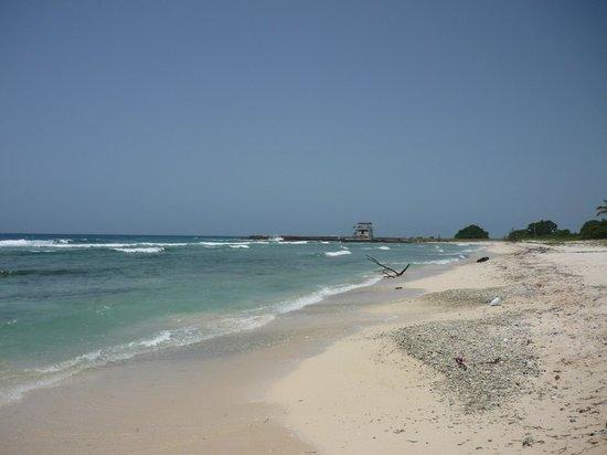 Península de Zapata National Park :                   playa girón