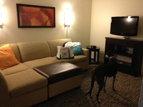 HYATT house Denver Airport: sitting area