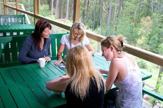 Eaglereach Wilderness Resort: Group Escapes