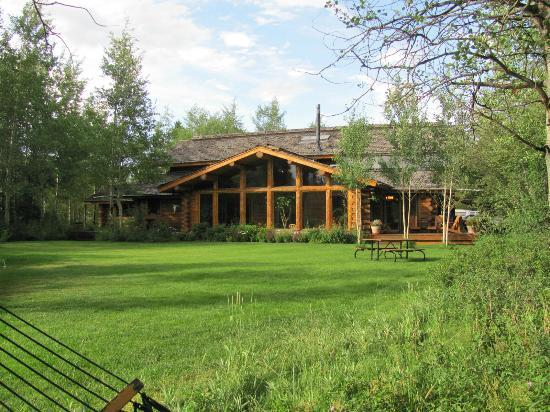 Wildflower Lodge at Jackson Hole: The back yard !
