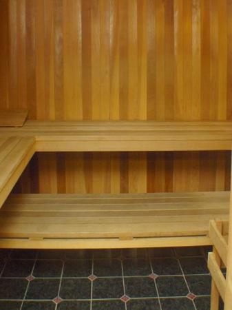Travelodge Healdsburg - Sonoma Wine Country : Sauna
