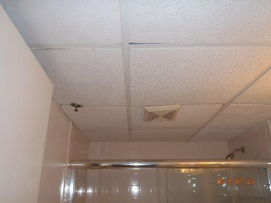 Carousel Resort Hotel & Condominiums: Drop Ceiling with old rusty tiles in bathroom