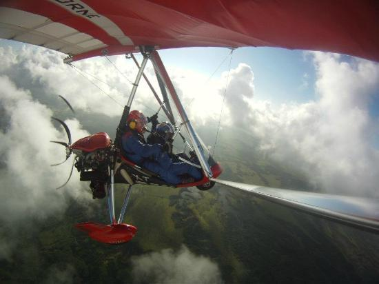 Birds In Paradise Flight School: In the clouds