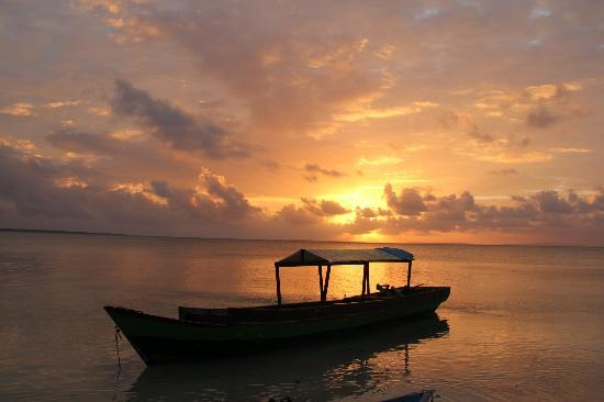 Wakatobi Hoga Diving: Sunset