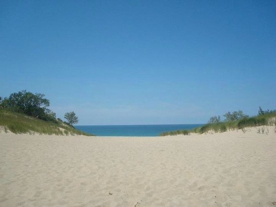 Warren Dunes State Park: View from a dune!